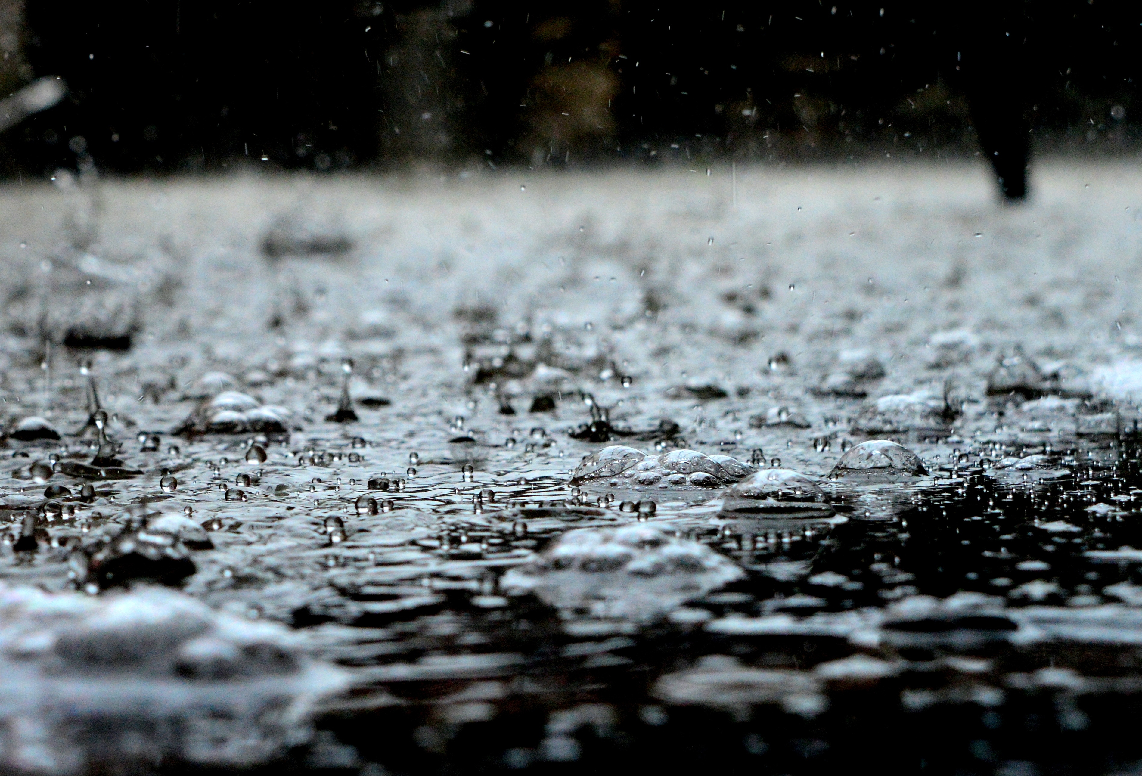 For damage caused by rain, call 1.877.PDAVIS.1